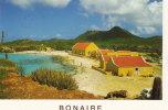 Park Slagbaai - Bonaire