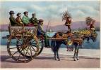Carretto Siciliano - 1000 - Non Viaggiata - Other Cities