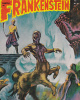 Castle Of Frankenstein 1974 Horror / Sci Fi Cinema Magazine - Horror/ Monster