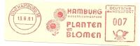 Germany Nice Cut Meter Hamburg Ausstellungspark, Planten Un Blomen, Hamburg 13-6-1961 - Bomen