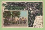 Bückeburg : Palais, L'Aigle. Dos Simple. 2 Scans. - Bueckeburg
