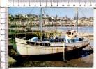 Les Grands Ports De Pêche - Un Des Plus Importants Situé Sur L'estuaire Du GOYEN AUDIERNE - Autres Communes