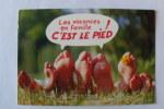 Les Vacances En Famille C'est Le Pied - N°621 - Humour