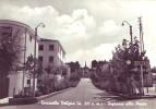 Torricella Peligna(Chieti)-Ingresso Alla Pineta-1961 - Chieti