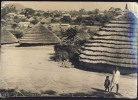GUINEA    Folk               Old Postcard - Guinea