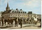 MONTEBOURG (Manche) Un Jour De Foire - Other Municipalities