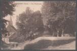 89 - CERISIERS - Les Promenades - Cerisiers