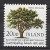 ISLANDE 1985 - Cent Horticulture Islandaise - 1v Neuf ** (MNH) - Islande