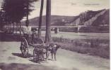 YVOIR = Equipage Ardennais (Nels  Bxl  S.51  N° 15) 1907 - Yvoir