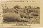 Expedition Citroen Croisière Noire 2e Mission Haardt Audouin Dubreuil Chasse Hippopotames - Centrafricaine (République)