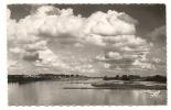 Ancenis (44) : Les Bords De La Loire En 1954. - Ancenis