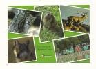 Cp, 57, Rhodes, Domaine De Sainte-Croix, Parc Animalier De Sainte-Croix, Multi-Vues - France