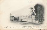 ENTREE DU PEYROU - Montpellier