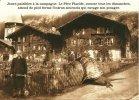 ESCARGOT HUMOUR JOURNEE PAISIBLE A LA CAMPAGNE LE PERE PLACIDE  ....INTRUS SOURNOIS QUI RAVAGE SON POTAGER - Animals