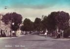 Guidonia(Roma)-Viale Roma-1960 - Guidonia Montecelio