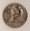 Médaille/Electricité De France Et Gaz De France/Modéle Bronze/vers 1950-1960   D13 - Non Classés