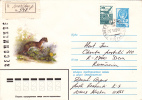 ANIMAL RODENTS,RONGEURS, MARTES 1985 REGISTRED COVER STATIONERY ENTIER POSTAL RUSSIA. - Rodents
