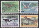 Tokelau 1993 Birds Of Tokelau MNH - Tokelau