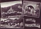 Pontepetri(Pistoia)-Saluti-1969 - Italia