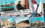 POST CARD,GREETINGS FROM GOZO,MALTA,Y1. - Malta