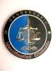 INSIGNE DE LA GENDARMERIE NATIONALE IDENTIFICATION CRIMINELLE   ETAT EXCELLENT - Police & Gendarmerie