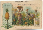Chromo 10,5 Par 7 Cms Recolte Ananas Pub Ananas De Noel Mondesir Pour Chocolat Louit - Chromos