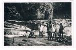 SUR-17      SURINAME : Op Evangelisatietocht In Het Bosland - Surinam