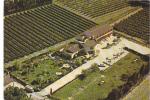 19751 BARBENTANE - Hôtel Castel Mouisson  Provence  Avignon . 76661 Ruyant . Vignes Vin