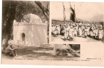 CP/Algérie/Marabout/                                                B27 - Argelia