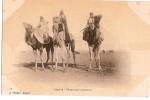 CP/Algérie/Chameaux Coureurs/ Vers 1900                                              B30 - Argelia