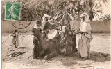 CP/Algérie/Chargement D´un Chameau/ 1909                                           B35 - Argelia