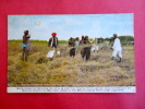 India Primitive Methods Are Still In Use Adv  Modern Harvesting Machines Ca 1910   ---- Ref 396 - Publicidad