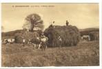 Carte Postale Ancienne Grangeneuve - Les Foins. Tableau Rustique - Agriculture, Chambon Sur Lignon, Attelage - Le Chambon-sur-Lignon