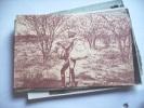 Africa Afrika Namibië Namibia Swakopmund Man In Wood - Namibië