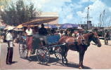 BAHAMAS NASSAU COLOURFUL CARRIAGES ARE A TRADITIONAL MODE OF TRANSPORTATION FOR SIGHTSEEING TOURIST OHL - Postkaarten