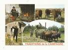 Cp, Agriculture, Traditions De La Campagne, Multi-Vues - Cultivation