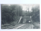 LESCHES - Pont Et Tunnel Du Chemin De Fer - Non Classés