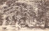 CPA De La Forêt  De MARLY LE ROI - La Table Et Le Chêne Royal. - Marly Le Roi