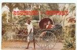 TAXI Ou FIACRE - Transport D'une Lady à Colombo Ceylon - Dos Scané - Taxi & Carrozzelle