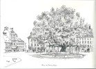 Place Du Tilleul, Bulle, Dessin De Godi Leiser - Dessins