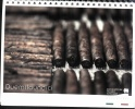 Calendario 2011 Manifatture Sigaro Toscano - Altri