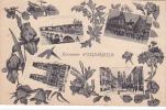 19798 Souvenir D'orleans -,éd HC ? - Multivues Fleurs