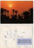 Car045 Iles, Isole, Islands Kerkennah | Tunisie, Tunisia | Tramonto, Sunset, Coucher Soleil - Halt Gegen Das Licht/Durchscheink.