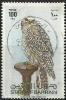 Bahrain, Falcon, 1980, Nov. 1, Used Stamp - Bahrain (1965-...)