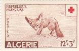 ALGERIE  : Fennec  :Y&T: ** : 343 - Algérie (1924-1962)