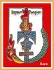 SUPER PIN´S POMPIERS : SP HAGUENAU, Très Belle Version Semi Artisanale En Zamac Base Or Cloisonnée + Vernis - Pompiers