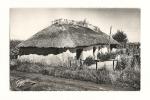 Cp, 85, Notre-Dame-de-Monts, Une Bourine, Voyagée 1957 - Autres Communes