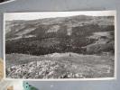 Vallée Du Fossa  (Mont Du Forez)  Format :26.5 X 44 - Sin Clasificación
