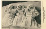 Etterbeek - Le Trio ( Triplets) De La Rue Des Champs, Né Le 1 Décembre 1909 - Etterbeek