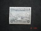 Newfoundland 1941 K.George VI  25 Cents   SG288     MH - 1908-1947
